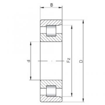 30 mm x 72 mm x 19 mm  ISO NF306 cylindrical roller bearings