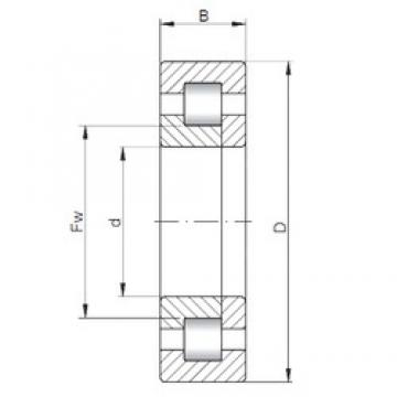 40 mm x 90 mm x 36,5 mm  ISO NUP3308 cylindrical roller bearings
